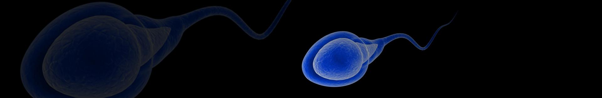 Azoospermia: o que é?